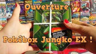 Ouverture Pokébox pokémon Jungko EX ¤ Y