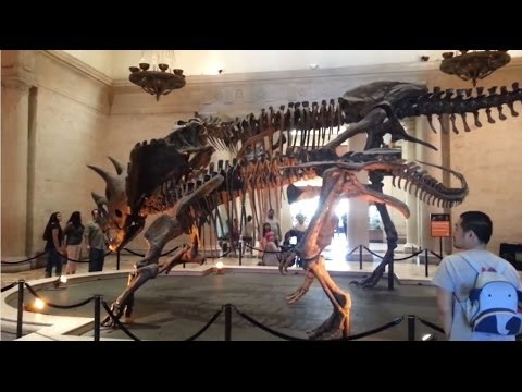 TDLOAT: Natural History Museum of Los Angeles (Ep.18)