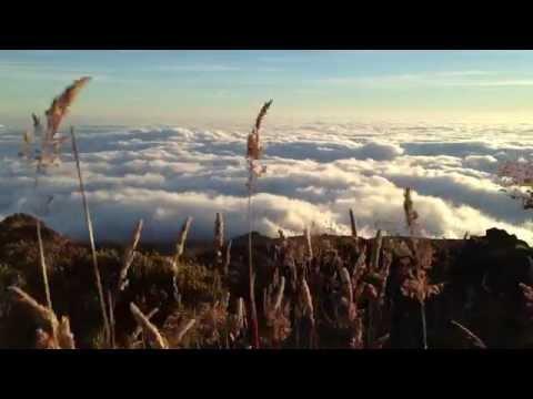 Haleakala National Park - breathtaking! Maui. June 2014