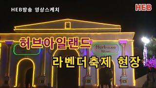 HEB방송 -(영상스케치)허브아일랜드 라벤더축제/장소:…
