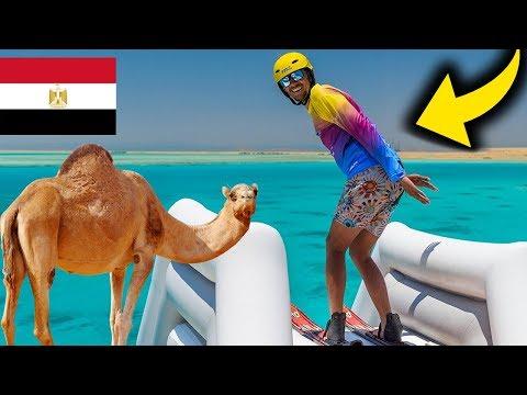 Polak założył firmę w Egipcie 💲💲💲