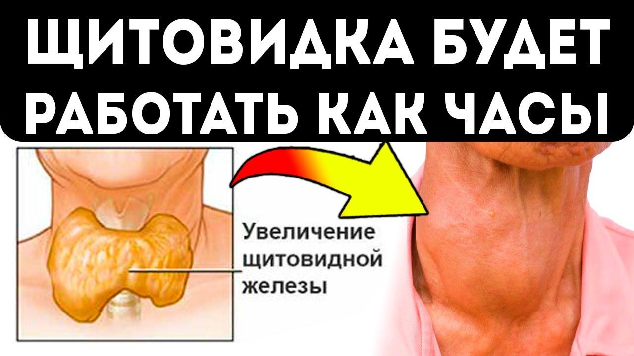 Щитовидка любит это! 8 продуктов для здоровья щитовидной железы