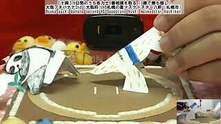 北海道発!牛乳パックで紙相撲実況中継 2020年9-10月場所-4日目-Kamisumo Tournament 2020-9-10 Day4