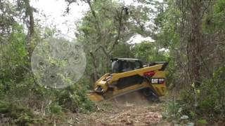 Video still for Diamond Skid Steer Forestry Head From Diamond Mowers