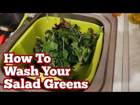 How To Wash Your Salad Greens / Grown With Charles Dowding's No Dig Organic Natural Gardening Method