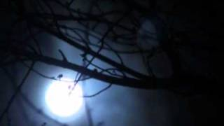 bangla song  Hridoy Khan  aajker ei nishi valobashi