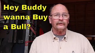 Is the bull hammer for sale? Yes it is - as is where is