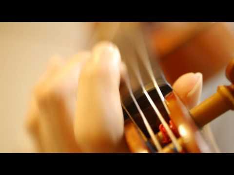 """adrenaline!!!""/TrySail (Violin Cover)"