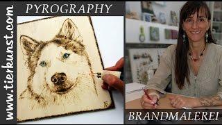 Speedpainting Pyrography Husky. Brandmalerei Husky Portrait Entstehung.