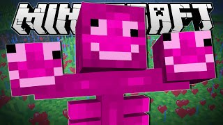 Minecraft | MINECRAFT HAS GONE CRAZY!!