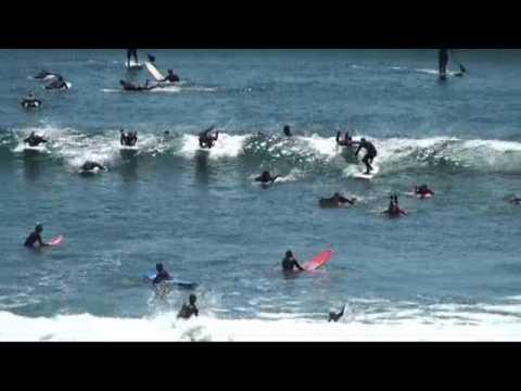 Cowells Santa Cruz California = out of control!