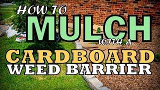 Cardboard Weed Barrier For Mulching