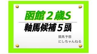 【函館2歳S 2018】直近の函館1200はストームバード系が好調!
