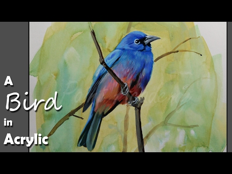 Acrylic Painting : A Bird | step by step with detail color information