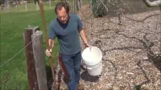 What Is In Paul's Compost - Back To Eden Garden - L2Survive with Thatnub