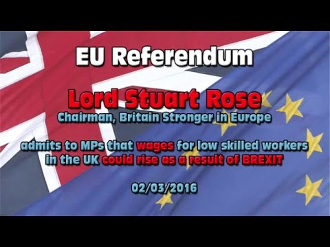 EU Referendum: Lord Rose, Britain Stronger in Europe, admits wages would rise after Brexit