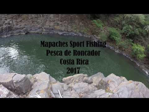 GoPro Pesca de Roncador, Mapaches Sport Fishing Costa Rica, Deportes KEKO