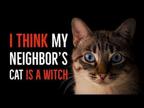 ''I Think my Neighbor's Cat is a Witch'' | BEST OF NOSLEEP 2018 [EXCLUSIVE]