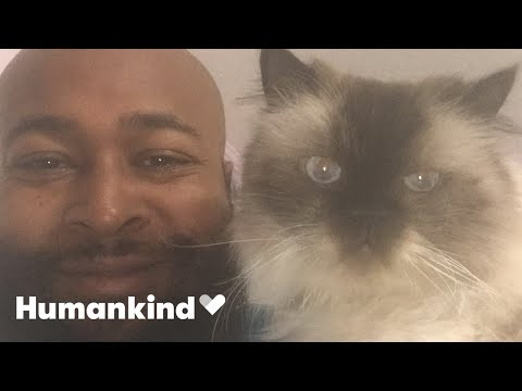 Rapper quits to start cat rescue   Humankind