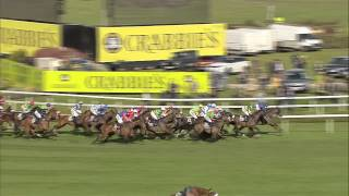 2015 Crabbie's Grand National - Many Clouds - Racing TV