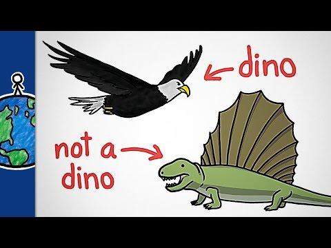 What Makes A Dinosaur?