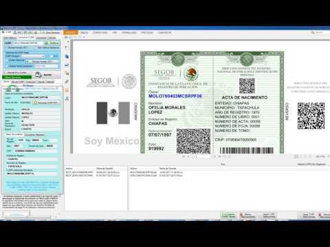 Imprimir CURP Verde Formato 2017 Original Codigo QR - Elohim Soft