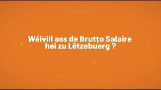 À combien s'élève le salaire mensuel brut au Luxembourg?
