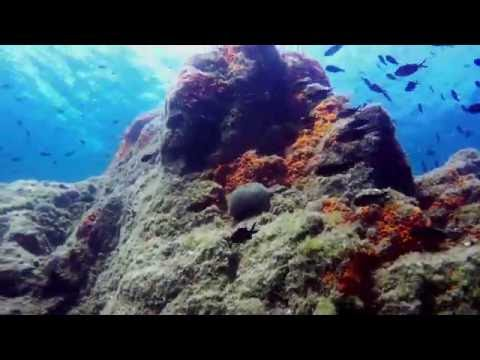 Scuba Diving - Cannes  - France - GoPro Hero4 Black 4K UHD