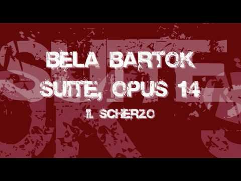 Bartok - Suite Op.14 (Acoustic Guitar Version)