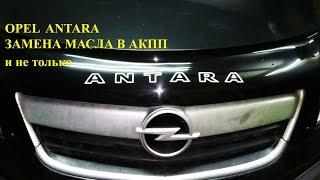 Opel Antara. Замена масла в АКПП и не только.