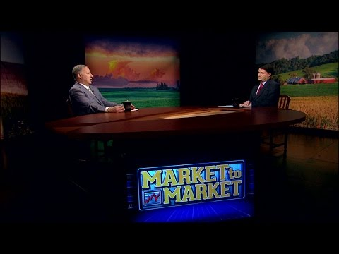 Market Plus: Mark Gold