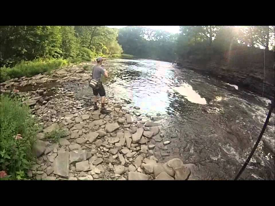 Atlantic salmon fishing pulaski ny for Best time for salmon fishing in pulaski ny