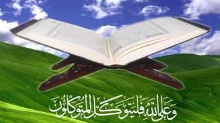 Quran Hindi - Arabic