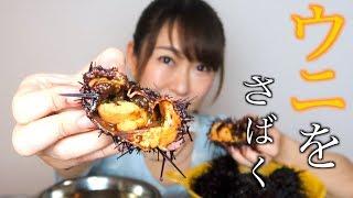【超飯テロ】大量のウニをさばいて贅沢ウニ丼を作って食べてみた!