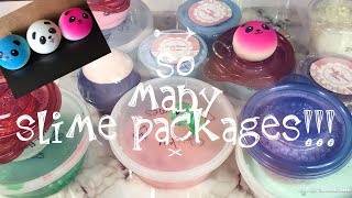Unboxing a bunch of SLIME TRADE PACKAGES (part 2)Mila, Camille etc ~slimeypandazzz thumbnail