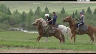 30.06.2016. Объздка лошадей