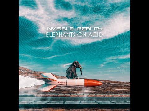 Invisible Reality - Elephants on Acid mp3 letöltés