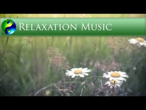 Relaxing Music: Reiki Music; Yoga Music; New Age Music; Relaxation Music; Spa Music; 🌅 623