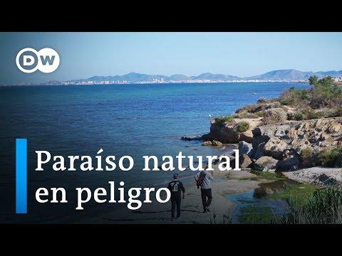 La lucha por una laguna limpia en España | DW Documental