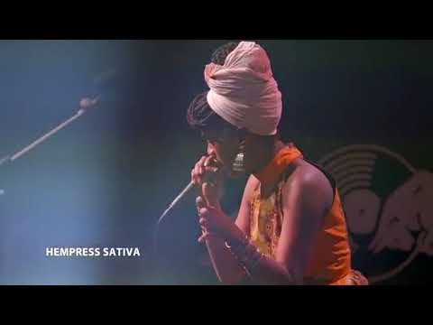 The Scientist  interview Dub Empress Sativa Red bull