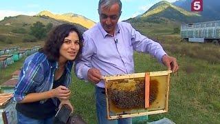 Ингушский мёд: Сделано в России. Утро на 5