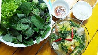 Cách nấu Canh riêu Cá  /canh cá thì là |Thanh Tâm Food