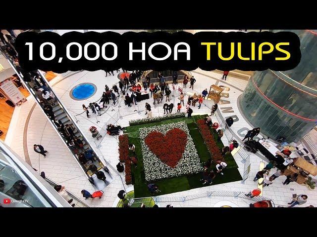 Cuộc Sống Canada | Đi coi 10,000 Hoa Tulips ở Mall bự nhất Vancouver, BC | Quang Lê TV