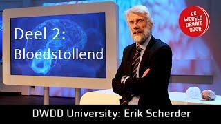 Het Brein deel 2 De Wereld Draait Door University met Prof. dr Erik Scherder (FullHD)