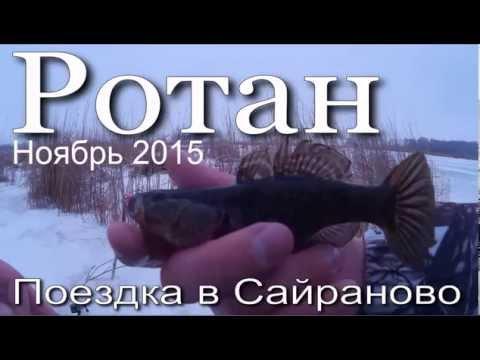 техника ловли ротана на блесну зимой
