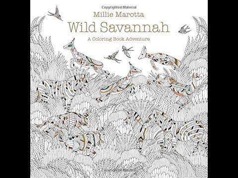 Flip Through Wild Savannah Coloring Book