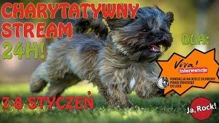 24h stream charytatywny dla zwierzaków z fundacji Ex Lege i Viva Interwencje!