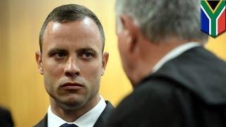 Pistorius murder trial: Prosecution