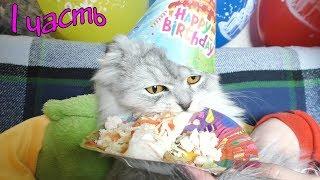 День Рождения кота Кевина | подготовка и сюрприз!
