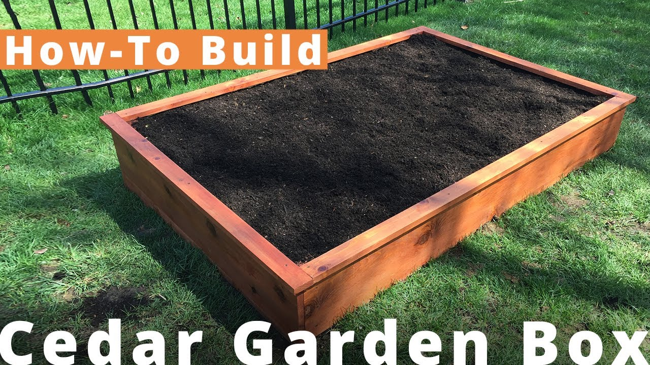 How To Make A Diy Cedar Garden Box For 100 Woodworking Youtube